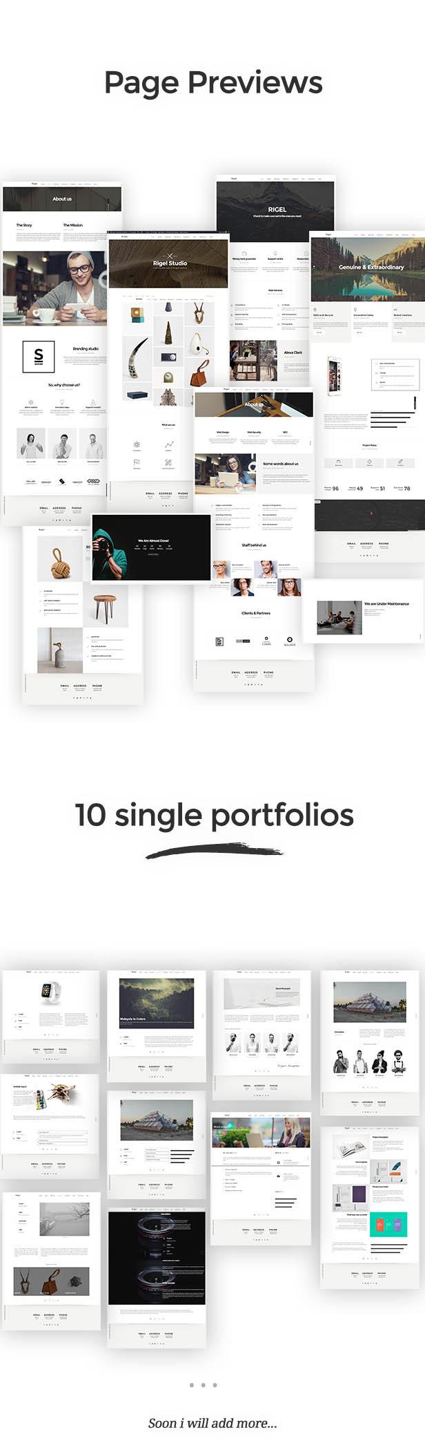 Rigel - Ultimate Agency & Portfolio Theme - 3